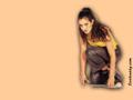 Amisha Patel Wallpapers 800 X 600