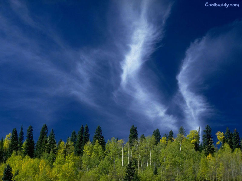 http://www.coolbuddy.com/wallpapers/landscapes/imgs/Landscape020.jpg